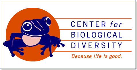 At the Center for Biological Diversity, we believe that the welfare of human beings is deeply linked to nature — to the existence in our world of a vast diversity of wild animals and plants. Because diversity has intrinsic value, and because its loss impoverishes society, we work to secure a future for all species, great and small, hovering on the brink of extinction. We do so through science, law and creative media, with a focus on protecting the lands, waters and climate that species need to survive.