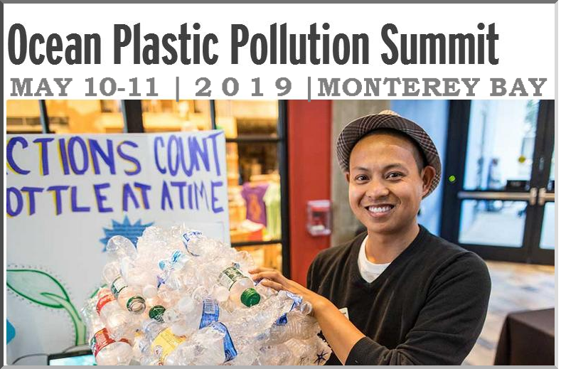 Do you live like you love the ocean? Are you ready to help your students live like they love the ocean? Join us for an action-based summit that prepares and motivates teachers to be part of the plastic pollution solution! This series is designed for teachers who are ready to go in-depth into plastic pollution issues and solutions with their students.