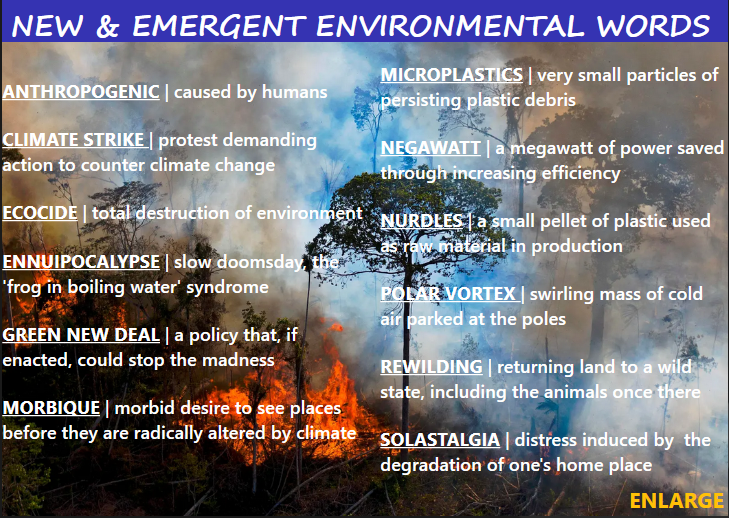 New and emergent environmental words