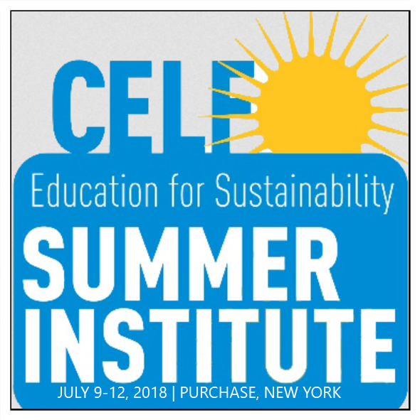 Join us for our transformative K-12 professional development experience in Education for Sustainability. Our flagship program returns to Manhattanville College for the 13th summer. Our widely respected facilitators will be joined by an extensive line-up of high-caliber speakers and case-study presentations. This Institute provides thought-provoking insight, engaging activities and extensive resources to help you and your school incorporate the big ideas of sustainability into existing curriculum