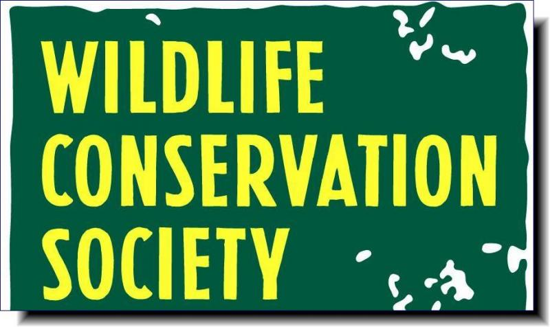 Wildlife Conservation Society | We have a bold vision for the future and a strategic plan to lead the way