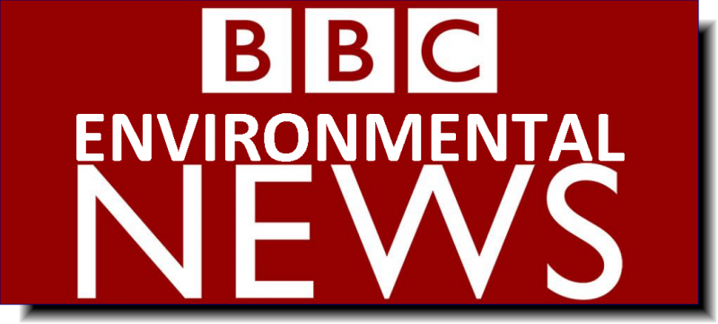 BBC Environmental News