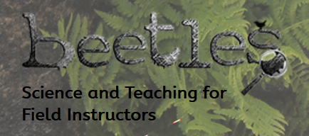 A collection of passionate science and environmental educators devoted to improving the quality of outdoor science education.  BEETLES (Better Environmental Education, Teaching, Learning & Expertise Sharing) is devoted to creating:      versatile environmental education professional learning materials;     student activities for use in the field;     a collaborative, resource-sharing network of environmental educators; and     additional resources for field instructors, leaders, and classroom teachers.  All BEETLES resources are based on current research and understandings about how people learn, and tested by dozens of programs in diverse settings all over the country (and beyond!). Although BEETLES materials have been designed for residential outdoor science schools, they've been snatched up and used successfully in a wide variety of outdoor science education settings.