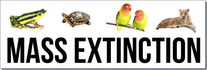 MASS EXTINCTION UNDERWAY  The World Wide Web's Most Comprehensive Source of Information on the Current Mass Extinction