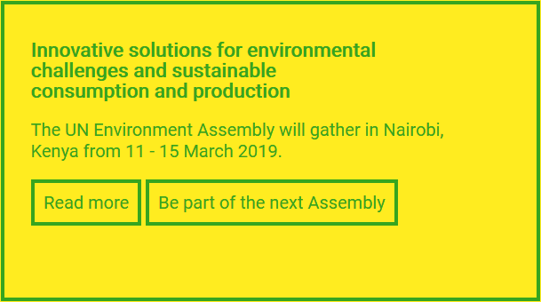 Innovative solutions for environmental challenges and sustainable consumption and production The UN Environment Assembly will gather in Nairobi, Kenya from 11 - 15 March 2019.