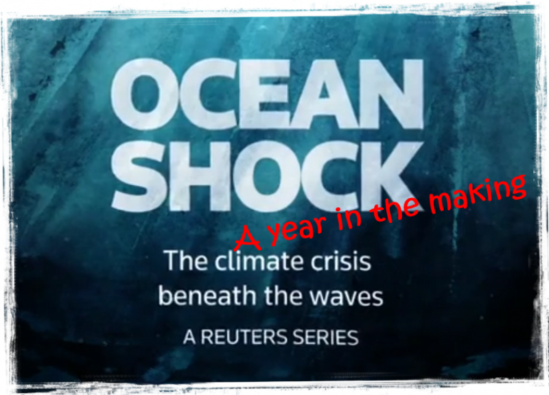 Ocean shock Reuters reveals the climate crisis beneath the waves. Driven by warming waters, marine life is on the move — and life on land is forever changed.