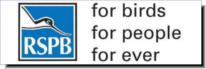 Royal Society for the Protection of Birds | for birds, for people, forever