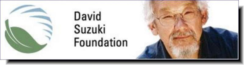 David Suzuki Foundation | Solutions are in our nature