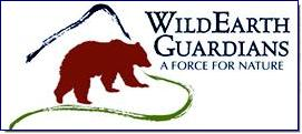 WildEarth Guardians protects and restores the wildlife, wild places, wild rivers, and health of the American West. We have four programs focusing on wildlife, wild places, wild rivers, and climate and energy.  Our main office is located at: 516 Alto Street, Santa Fe, NM 87501 phone 505.988.9126 fax 505.213.1895  We also have physical offices in Tucson, Denver, Portland, Seattle and Missoula.