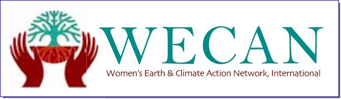 The Women's Earth & Climate Action Network is a solutions-based, multi-faceted effort established to engage women worldwide to take action as powerful stakeholders in climate change and sustainability solutions.